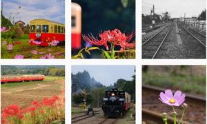 レトロな電車 #小湊鉄道